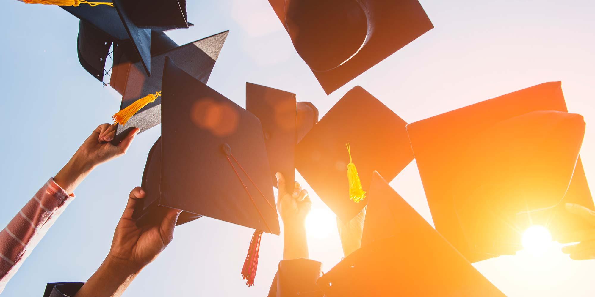 Advogado recém-formado: o que fazer depois da faculdade de Direito?